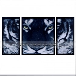 Big Black Tiger - picture triptych